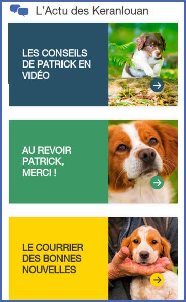 Livre sur le dressage des chiens