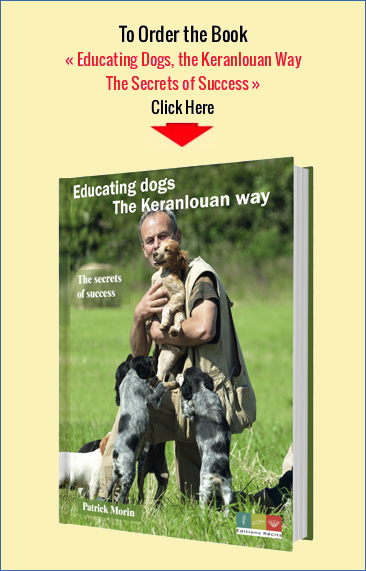 Educating Dogs, the Keranlouan Way - The Secrets of Success