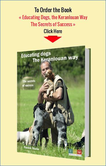 Educating Dogs, the Keranlouan Way - The Secrets of Success