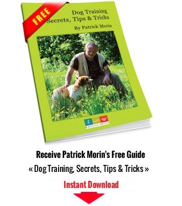 Patrick Morin Free Booklet